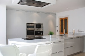 Contemporary flat panel kitchen design 1